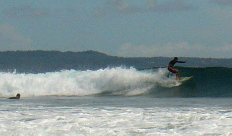 bali waves surfing
